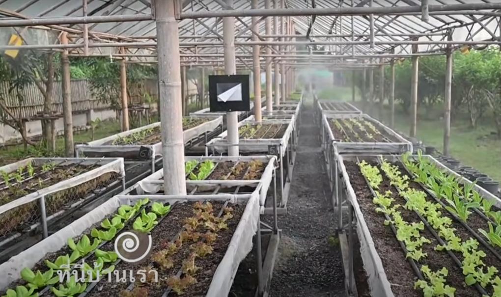 ผู้ประกอบการผลิตพืชระบบเกษตรอัจฉริยะ